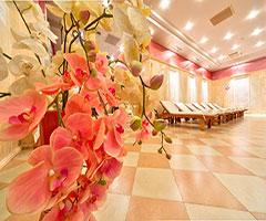 Уикенд в Хисаря! 2 нощувки със закуски + СПА в хотел Клуб Централ 4* през Ноември и Декември! Дете до 11.99г. - безплатно!