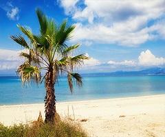 През Юли: 5 нощувки със закуски и вечери в хотел Elinotel Polis 3*, Халкидики, Гърция!
